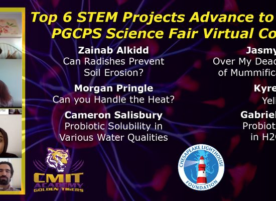 Top 6 STEM Projects Advance to 73rd Annual PG Science Fair Virtual Competition