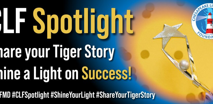 CLF Spotlight: Shining a Light on Success